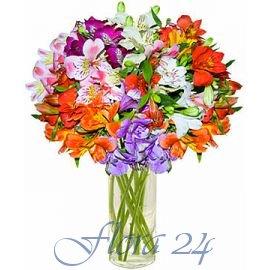 Цветы на заказ белая церковь купить цветы в вакуумной упаковке